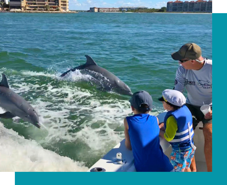 Dolphin And Kids